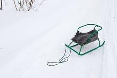 有一件披肩的爬犁在雪 库存图片