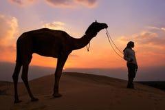 有一头骆驼的在日落,在贾伊斯附近的塔尔沙漠现出轮廓的人 免版税库存照片