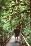 有上升在木桥的背包的旅客在绿色森林里 免版税库存图片