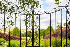 有上升的常春藤的美好,老花园大门 免版税图库摄影