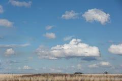 有上面蓝天的国家小牧场 库存图片