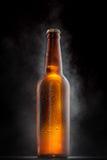 有下落的冰镇啤酒瓶在黑色 免版税库存图片