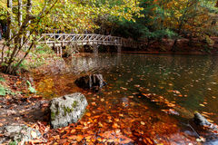 有下落的叶子的木桥在湖 免版税库存图片
