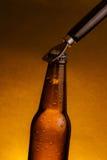 有下落的新鲜的冰镇啤酒强麦酒瓶和停止者开放与瓶盖启子 免版税图库摄影