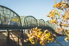 有下降时间叶子的跨境5桥梁 免版税库存照片