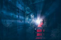 有不可思议的光的妇女在一个黑暗的森林里 免版税库存图片