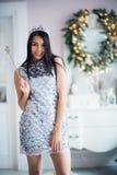 有不可思议的鞭子的性感的圣诞老人帮手女孩 穿在圣诞节背景的俏丽的妇女神仙美丽的发光的礼服 库存图片