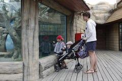 有两个儿子的母亲在动物园里 免版税库存照片