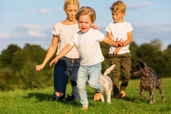 有两个孩子的母亲和两条小狗使用户外 免版税库存照片