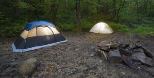有两个帐篷的森林 库存图片