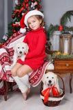 有两只小狗金毛猎犬的愉快的女孩在圣诞树背景  免版税库存照片