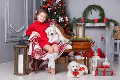 有两只小狗金毛猎犬的愉快的女孩在圣诞树背景  图库摄影