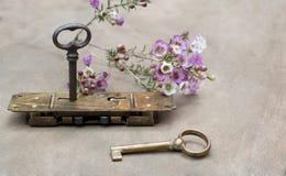 有两把钥匙的老锁与花 免版税库存图片