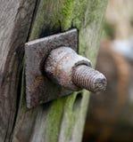 有两枚坚果的生锈的螺栓在一本木日志 库存照片