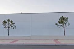 有两棵树的在天空的墙壁和飞机 免版税库存图片