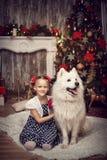 有两白色狗的女孩在圣诞树附近 图库摄影