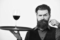 有严密的面孔的男服务员握酒精饮料卷曲的髭 服务和餐馆承办酒席概念 刮胡须人 免版税图库摄影