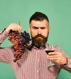 有严密的面孔的种葡萄并酿酒的人提出产品由葡萄制成 库存照片