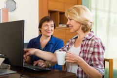有个人计算机的两个年迈的同事 免版税库存照片
