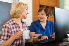 有个人计算机的两个年迈的同事 免版税库存图片
