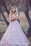 有丰富的发型的华美的白肤金发的夫人在锦站立在干燥不生叶的树的舞会礼服 免版税库存图片