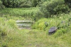 有丰富的植被的沼泽的地形,一条被倒置的老木小船在草,夏天多云大风天在 库存图片