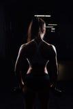有举的哑铃的美丽的健身妇女 库存照片