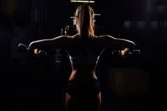 有举的哑铃的美丽的健身妇女 免版税库存照片