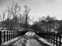 有乡下公路的小牧场 库存照片