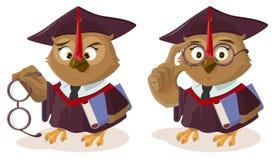 有书和恶劣的眼力的猫头鹰老师 向量例证