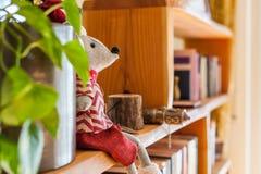 有书和植物的室内设计机架 免版税库存图片