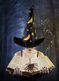 有书和蜘蛛的巫婆 库存图片