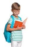 有书的小男孩 库存图片