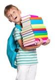 有书的小男孩 库存照片