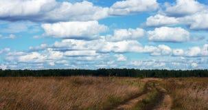 有云彩时间间隔的草甸 影视素材