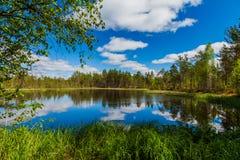 有云彩的美丽的森林湖 芬兰 库存图片