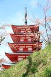 有五传说上有名塔的樱花 免版税图库摄影