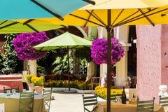 有五颜六色的伞和九重葛树的典型的墨西哥餐馆 免版税图库摄影