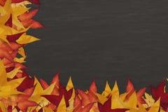 有五颜六色的叶子边界的黑板 免版税库存图片