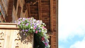 有五颜六色的喇叭花的木阳台 免版税库存图片