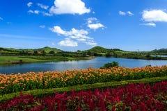 有五颜六色的庭院的湖 库存图片