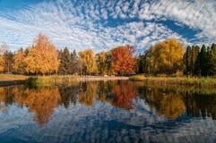 有五颜六色的树的美丽的秋天公园和风景天空在水中反射了 免版税库存图片