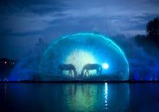有五颜六色的照明的音乐喷泉在晚上 免版税图库摄影