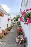 有五颜六色的花的Alberobello街道 免版税库存图片