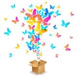 有五颜六色的蝴蝶的箱子 库存例证