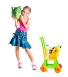 有产品篮子的女孩  免版税库存图片