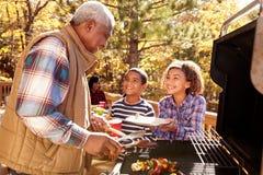 有享用室外烤肉的孩子的祖父母 免版税库存图片