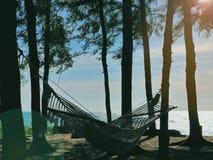 有人的吊床,栓对树在沙滩旁边,在黄昏的松弛环境里,几乎日落 图库摄影