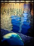 有人的阴影的芝加哥河大厦的riverwalk和反射的在水中 库存照片