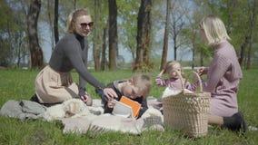 有他们的两个年轻母亲孩子坐毯子在自然的绿色惊人的公园在春日 妈妈和儿子,母亲 股票视频